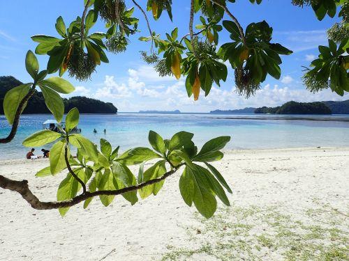 white beach bay shade