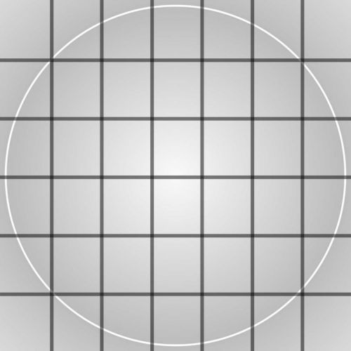 White Circle With Black Grid