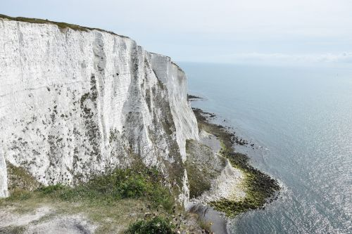 white cliffs dover cliffs