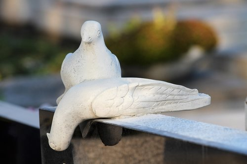 white doves  monument  cemetery