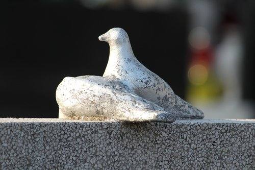 white doves  monument  sculpture