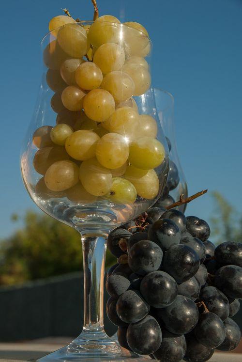 white grape black grape glass