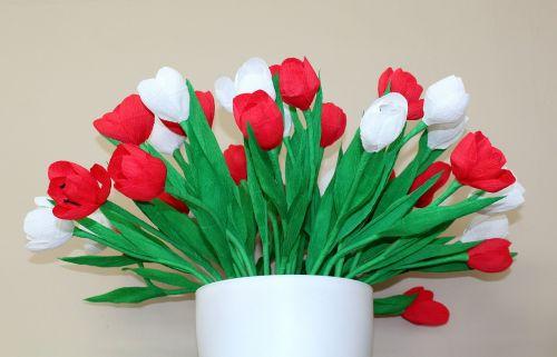 white - red flowers 11 nov