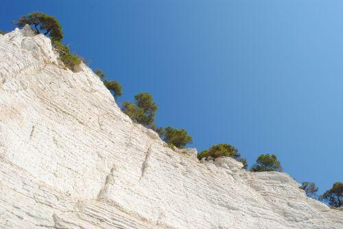 white rocks rock plants heaven
