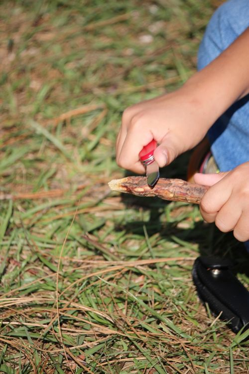 whittling scouts summer