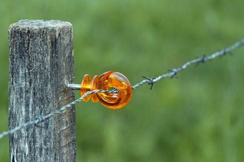 wicker fence mount plastic