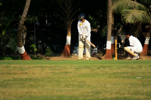 wicketkeeper cricket defense