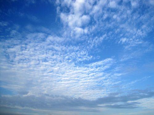 debesis, nerimtas, skiriasi, balta, dangus, mėlynas, plačiai paplitęs debesis