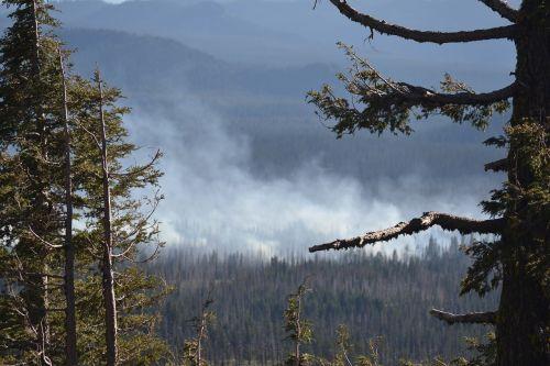 wild fire forest fire oregon