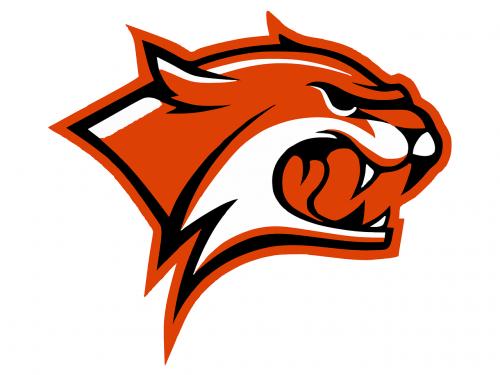 wildcat head logo