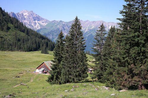 willers alp alp bad hindelang