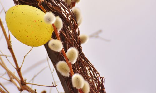 willow catkin spring easter egg