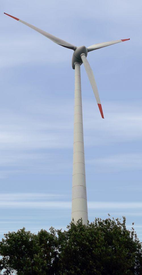 wind pinwheel power generation