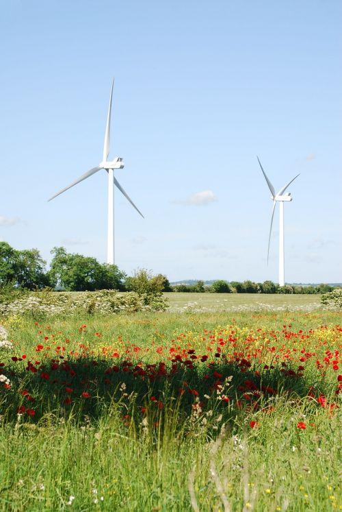 wind turbines farmland