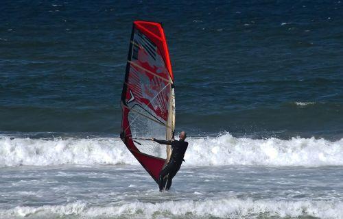 wind surfer surfer man