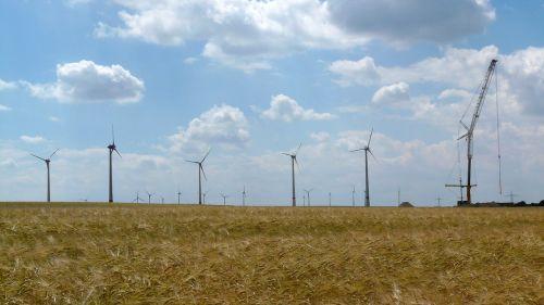 wind turbine cornfield assembly