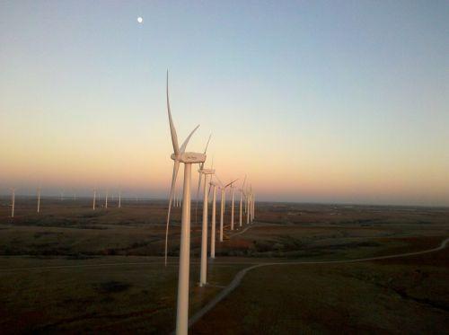 wind turbine generator rotor