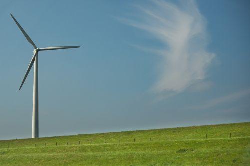 windmill dutch green