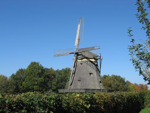 windmill hesse park hedge