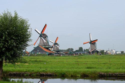 windmills dutch landscape landscape