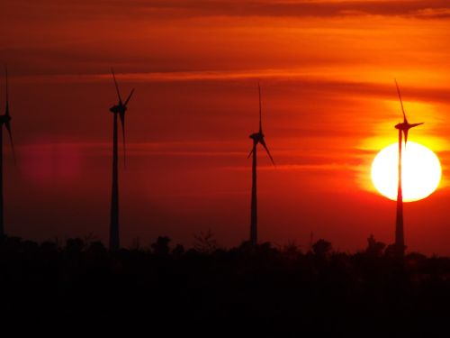 windmills sun nature
