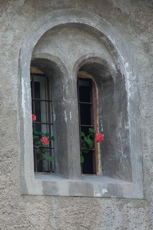 window flower weathered