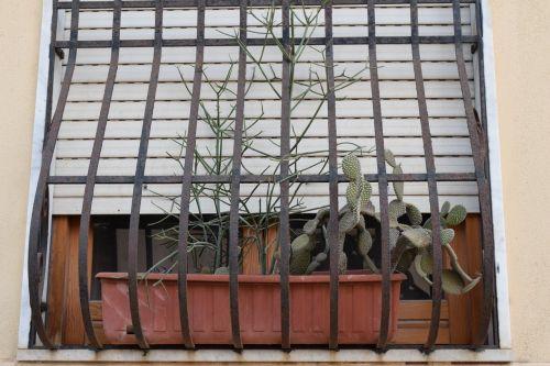 window window decorations flower box