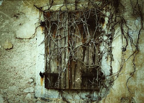 window shutter ruin