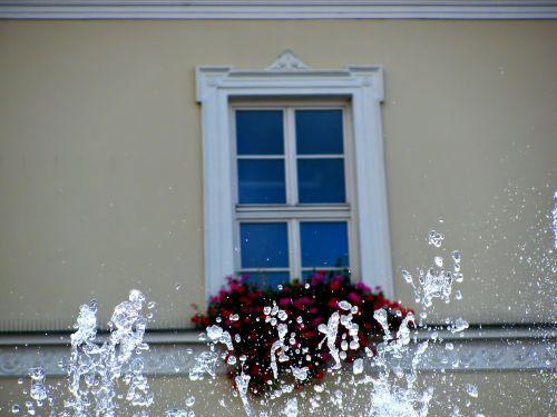 window building urban