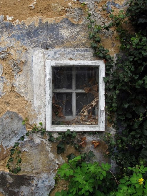 window old window window frames
