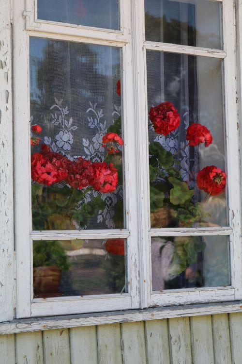 window trakai lithuania