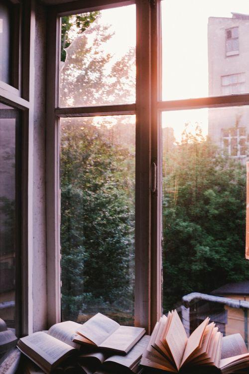 window glass shield