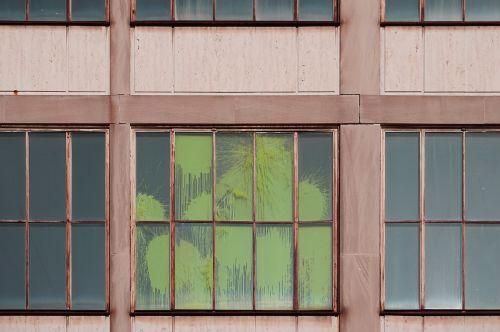 window panes wooden