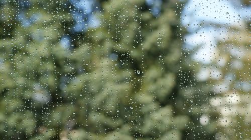 window drops rain