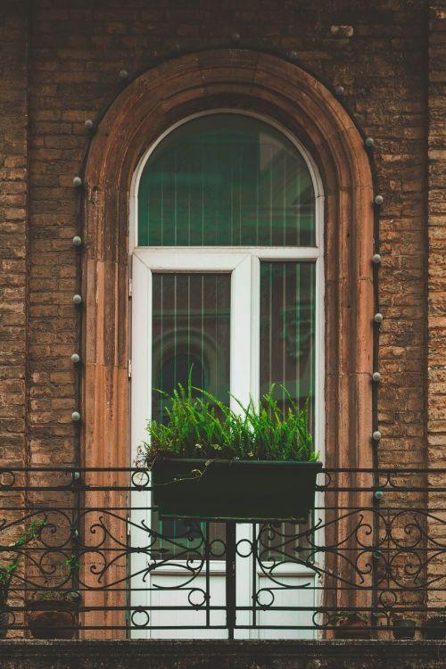 window home architecture