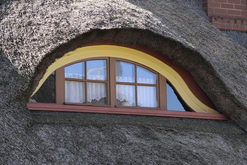 window  house  architecture