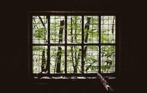window iron bars prison