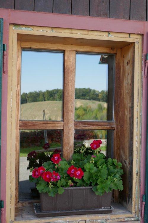 window  mirroring