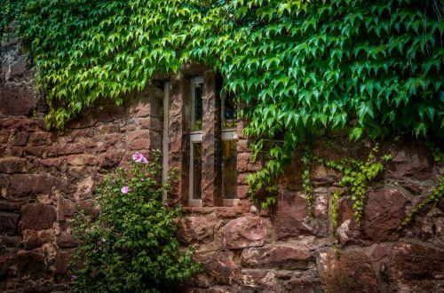 window facade architecture