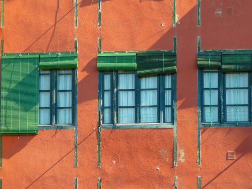 window blinds green