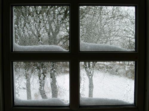 window snow lattice windows