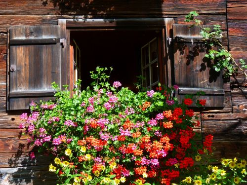 window farmhouse floral decorations