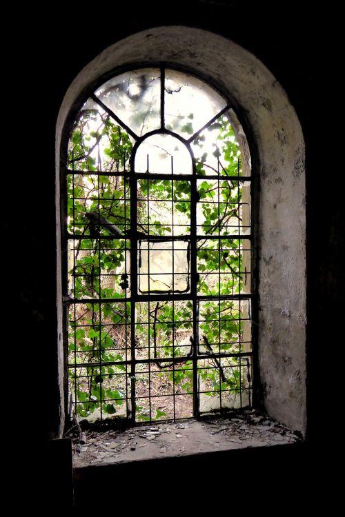 window old grid