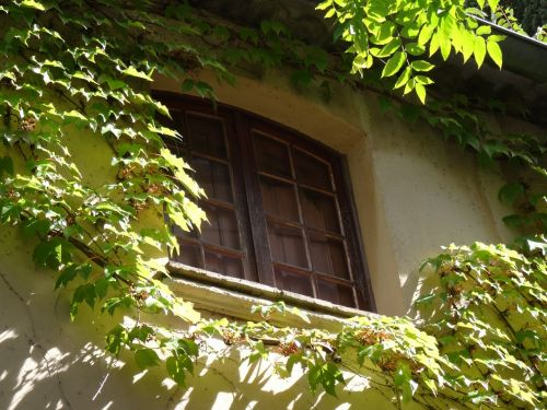 window shutters architecture