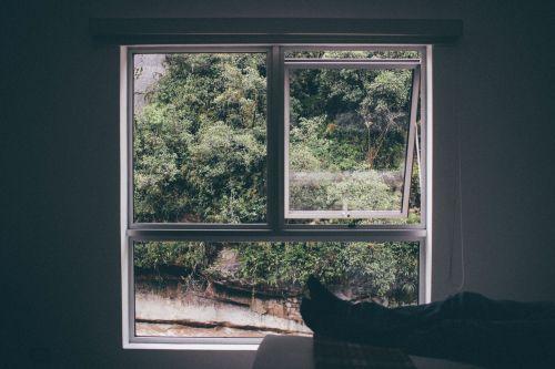 window frame view frame