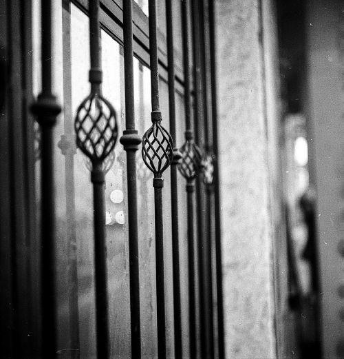 window grill iron window