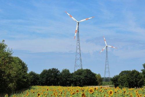 windräder  energy  alternative energy