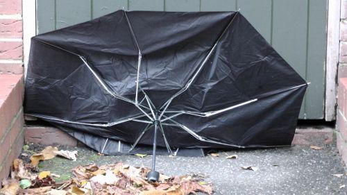 Windswept Umbrella