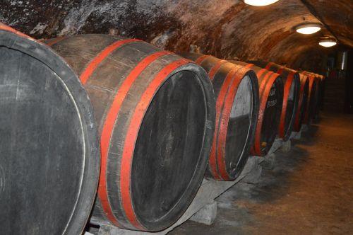wine wine barrels wine cellar