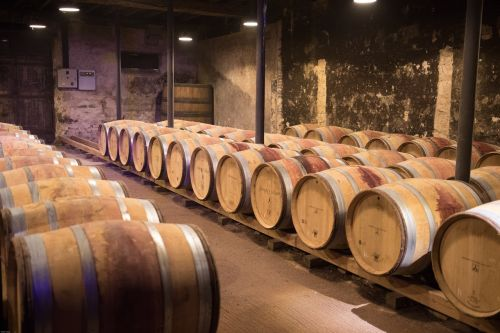 wine beaujolais cellar